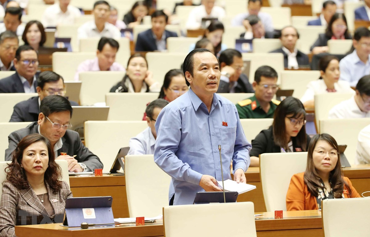 Đại biểu Quốc hội phát biểu. (Ảnh: Phương Hoa/TTXVN)
