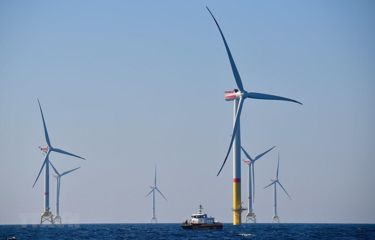 Tuabin gió tại Biển Baltic, miền Bắc nước Đức. (Ảnh: AFP/TTXVN)