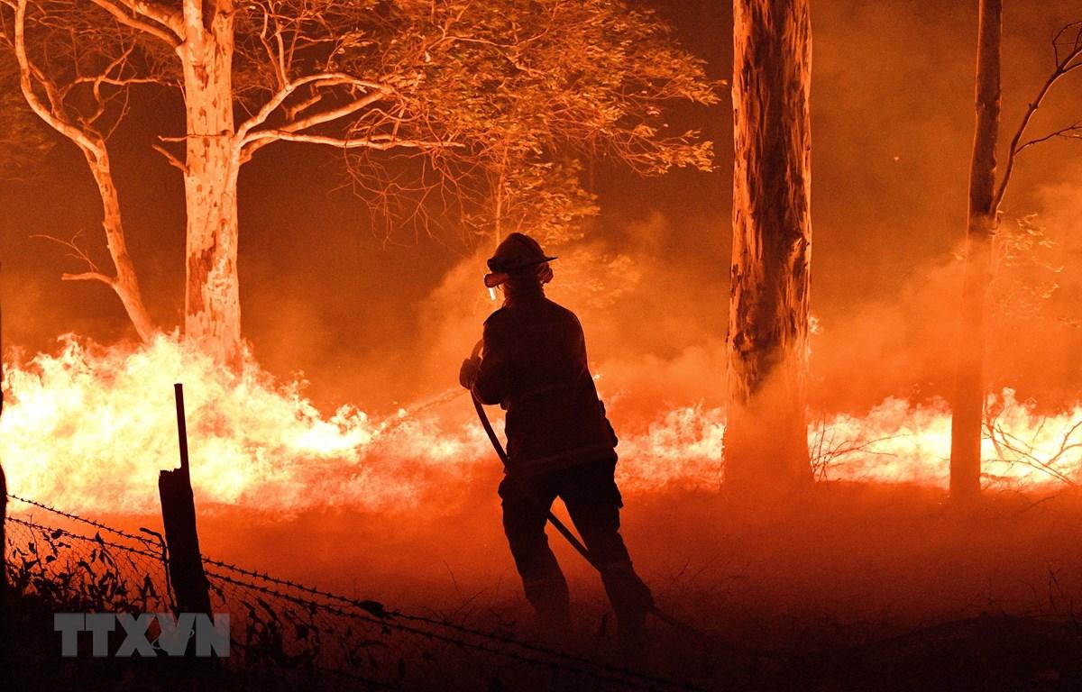 Lực lượng cứu hỏa Australia nỗ lực đập tắt các đám cháy rừng. (Ảnh: AFP/TTXVN)
