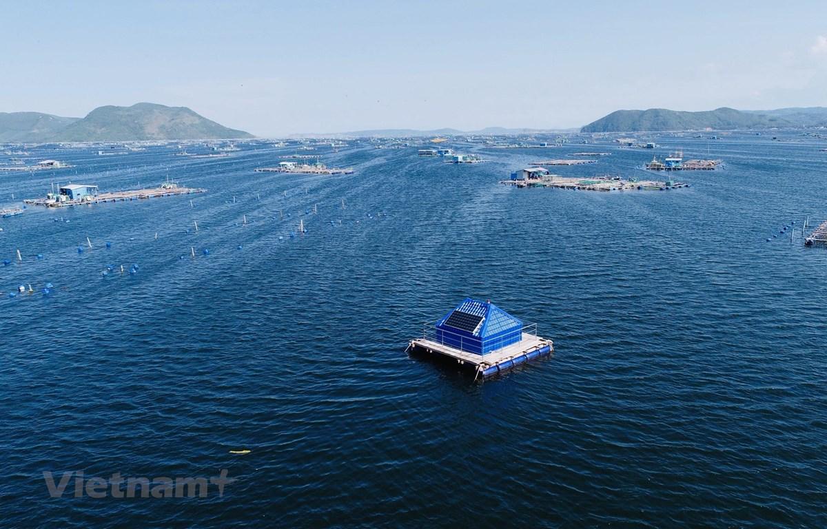 Hệ thống giám sát môi trường nước biển ứng dụng công nghệ tiên tiến ở Phú Yên. (Ảnh: UTS Rapido Việt Nam)