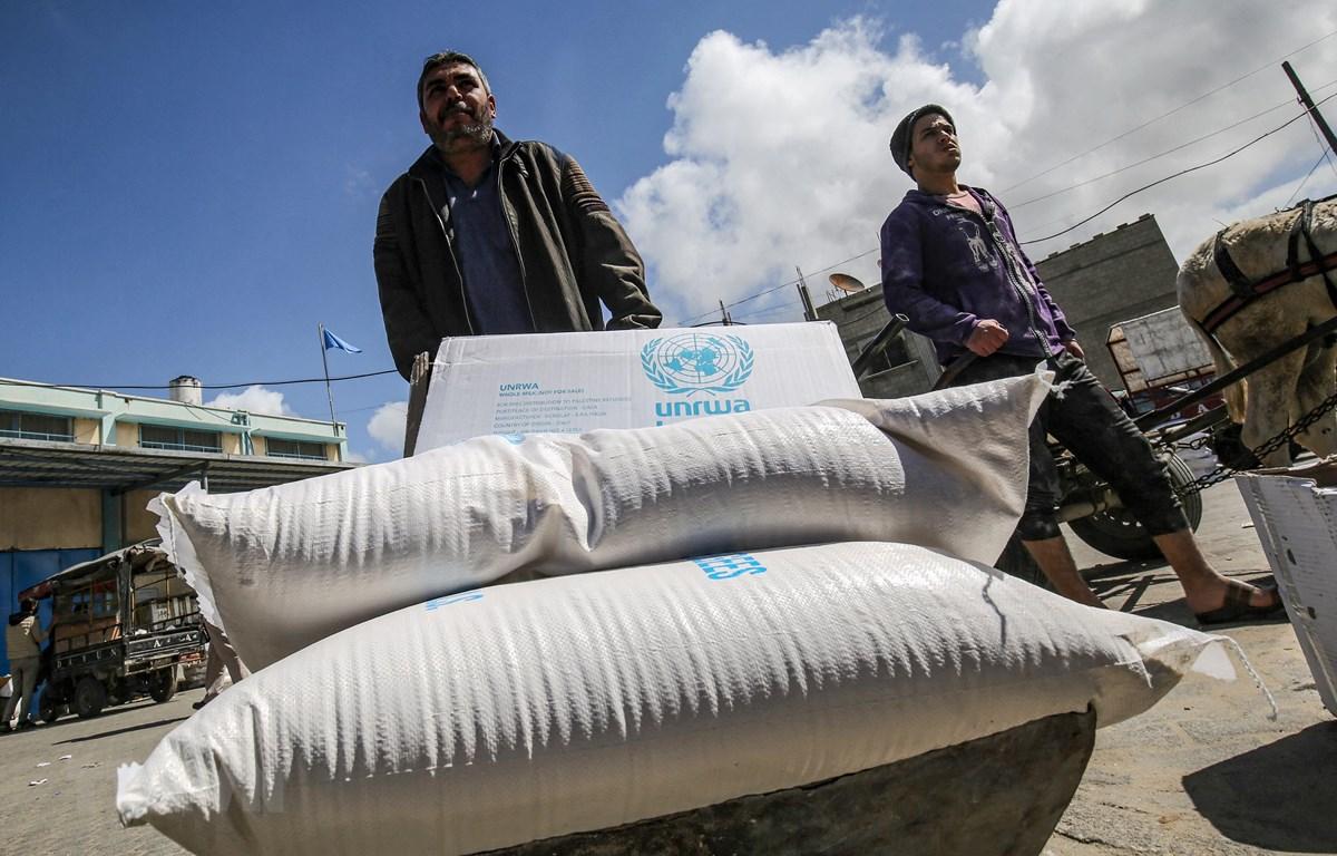 Người dân Palestine nhận hàng viện trợ từ UNRWA, tại Dải Gaza ngày 9/3/2020. (Ảnh: AFP/TTXVN)