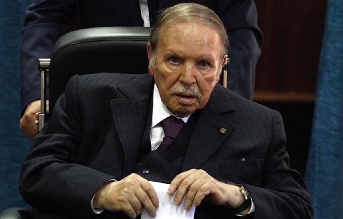 Tổng thống Abdelaziz Bouteflika. (Nguồn: AP)