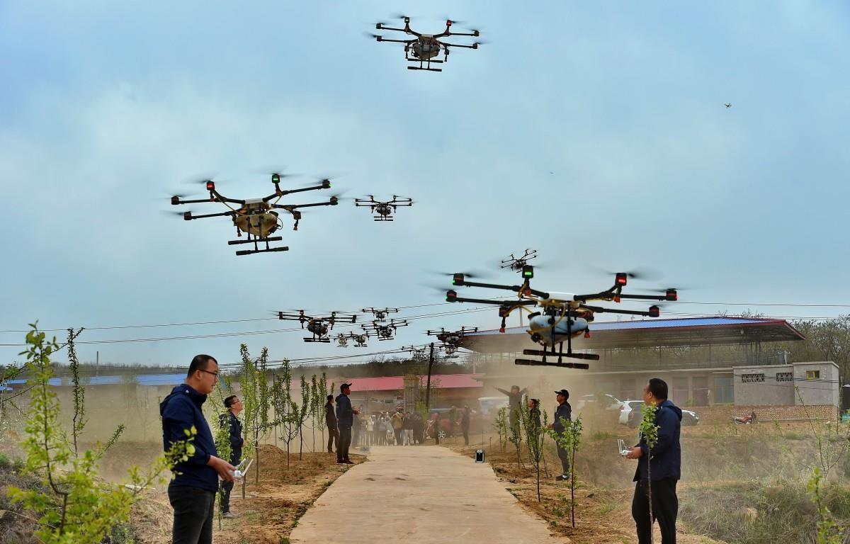 Điều khiển máy bay không người lái để phun thuốc trừ sâu ở tỉnh Sơn Tây của Trung Quốc. (Nguồn: Tân Hoa Xã)