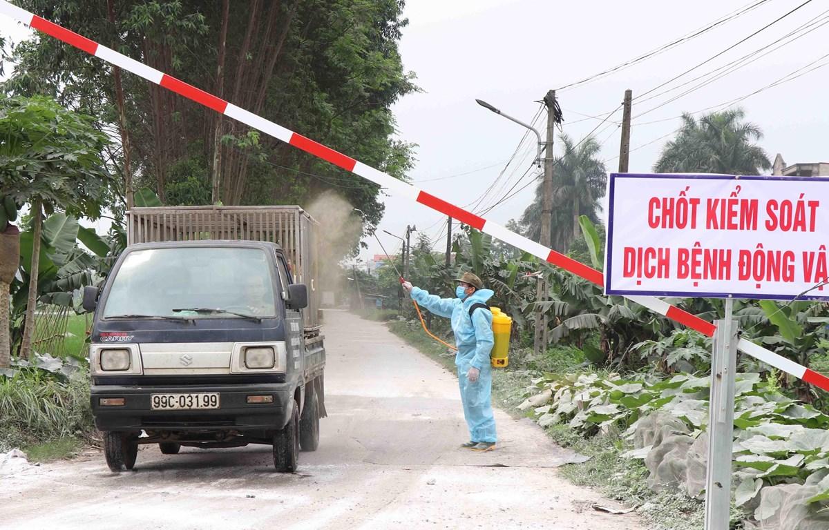 Lực lượng chức năng phường Khắc Niệm, thành phố Bắc Ninh, tỉnh Bắc Ninh phun khử trùng, tiêu độc các phương tiện ra vào địa phương. (Ảnh: Diệp Trương/TTXVN)