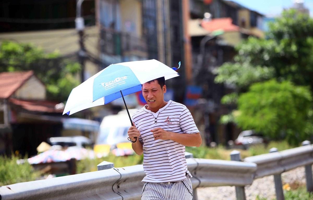 Ô là dụng cụ tránh nắng không thể thiếu đối với người đi bộ mỗi khi có việc phải di chuyển ngoài đường. (Ảnh: Quang Quyết/TTXVN)