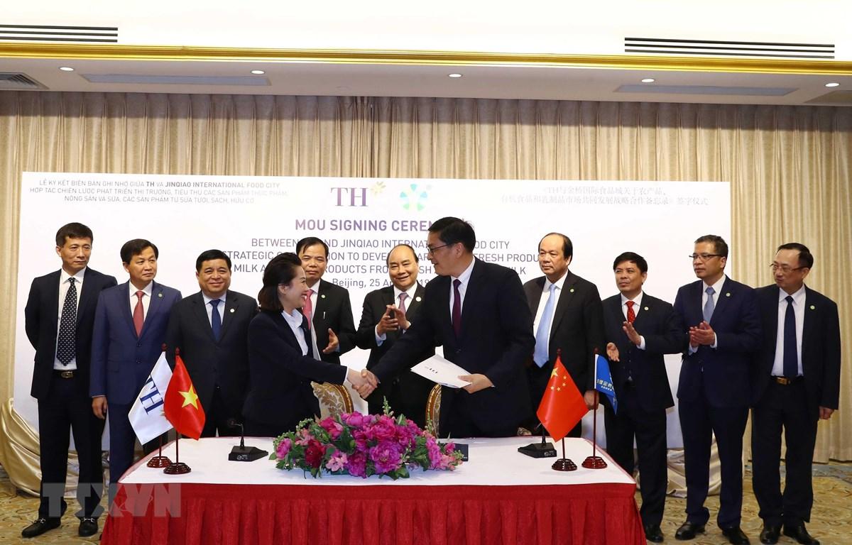 Thủ tướng Nguyễn Xuân Phúc và các đại biểu chứng kiến Lễ ký Biên bản ghi nhớ hợp tác. (Ảnh: Thống Nhất/TTXVN)