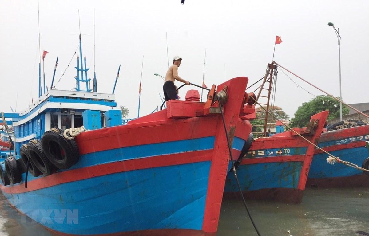 Người dân chằng buộc, neo tàu chắc chắn vào bờ để chống bão. (Ảnh: Nguyễn Oanh/TTXVN)
