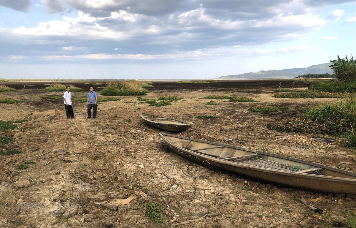 Đầm Trà Ổ (huyện Phù Mỹ) có diện tích rộng hơn 1.200 ha đã cạn khô nước, hàng ngàn hộ dân sông chung quanh đầm thiếu nước sạch nghiêm trọng. (Ảnh: Nguyên Linh/TTXVN)