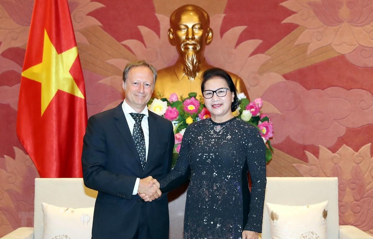 Chủ tịch Quốc hội Nguyễn Thị Kim Ngân tiếp Ngài Bruno Angelet, Trưởng đại diện Phái đoàn Liên minh châu Âu tại Việt Nam đến chào từ biệt nhân dịp kết thúc nhiệm kỳ công tác. (Ảnh: Trọng Đức/TTXVN)