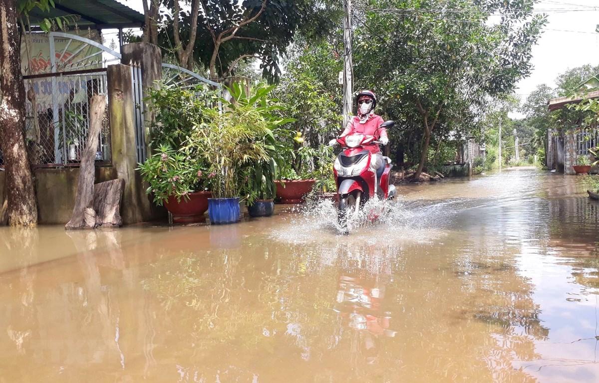 Người dân sống trong cảnh ngập nước. (Ảnh: K GỬIH -TTXVN)