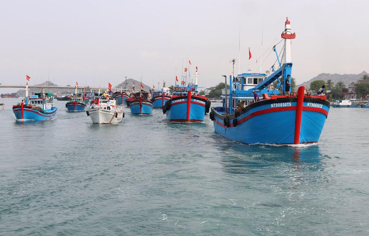 Đội tàu cá của tỉnh Ninh Thuận vươn khơi khai thác hải sản. Ảnh minh họa. (Ảnh: Nguyễn Thành/TTXVN)