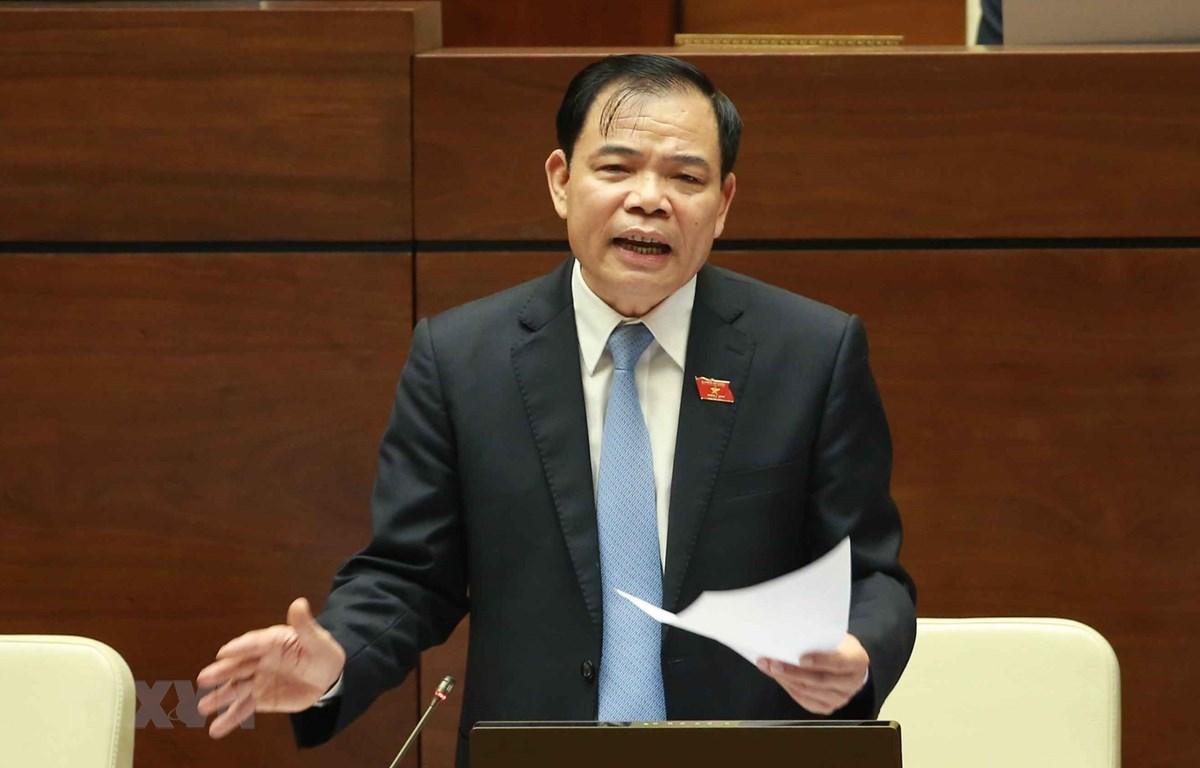 Bộ trưởng Bộ Nông nghiệp và Phát triển nông thôn Nguyễn Xuân Cường trả lời các câu hỏi của đại biểu Quốc hội. (Ảnh: Doãn Tấn /TTXVN)