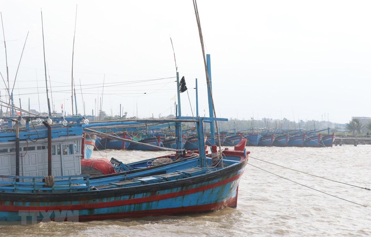 Tàu thuyền của ngư dân Phú Yên vào neo đậu tránh bão tại cảng cá Đông Tác, phường Phú Đông, thành phố Tuy Hòa. (Ảnh: Phạm Cường/TTXVN)