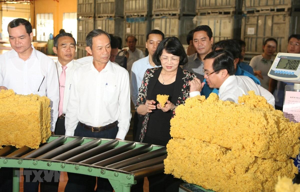 Phó Chủ tịch nước Đặng Thị Ngọc Thịnh và đoàn công tác thăm nhà máy chế biến mủ cao su của Tổng Công ty Cao su Đồng Nai. (Ảnh: Sỹ Tuyên/TTXVN)