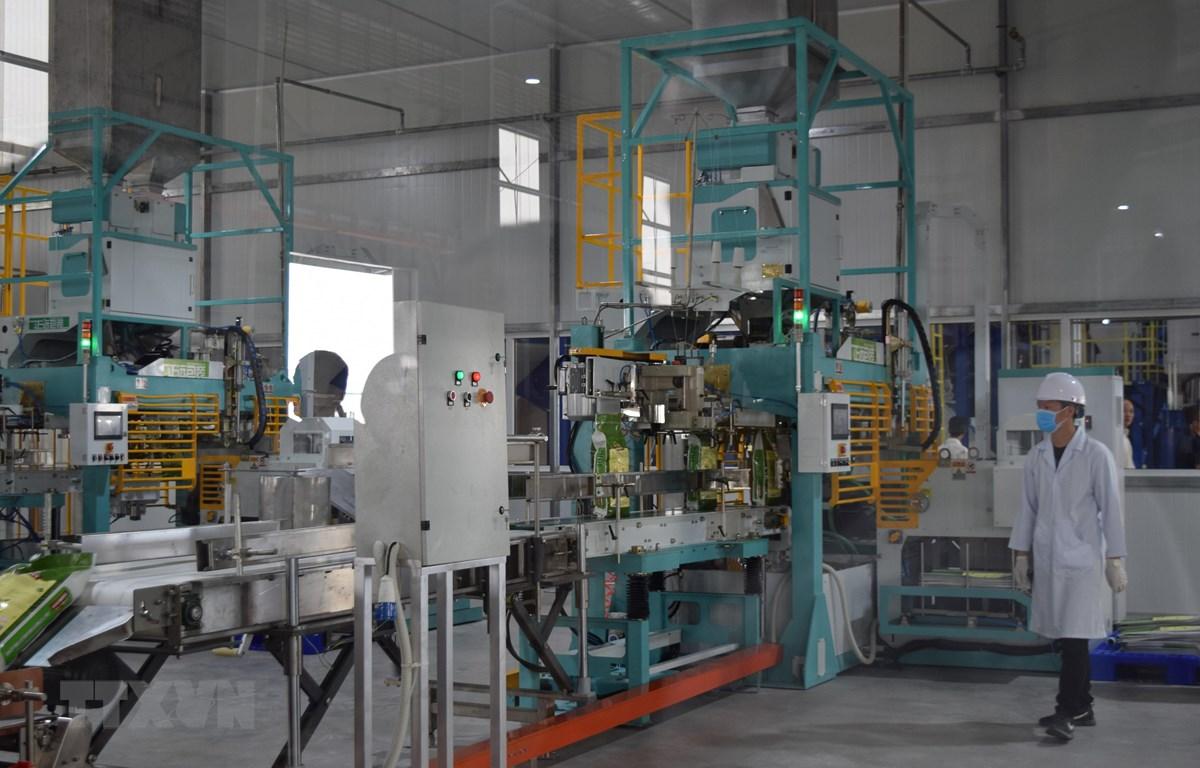 Dây chuyền sản xuất gạo hiện đại tại Trung tâm vừa được khai trương. (Ảnh: Chương Đài/TTXVN)