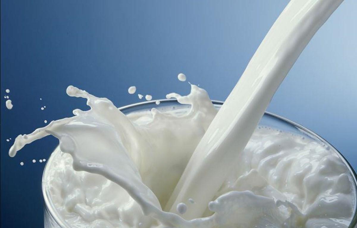 Vì sao cần phải bổ sung 21 vi chất vào sữa học đường?