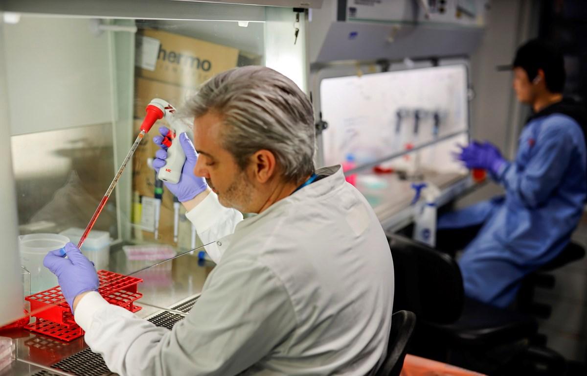 Nghiên cứu vắcxin phòng COVID-19 tại một phòng thí nghiệm ở London, Anh. (Nguồn: AFP/TTXVN)