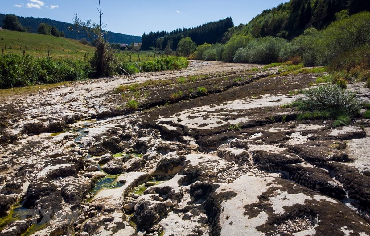 Trong ảnh: Một con sông khô cạn do hạn hán kéo dài ở La Longeville, Pháp ngày 12/8/2018. (Nguồn: AFP/TTXVN)