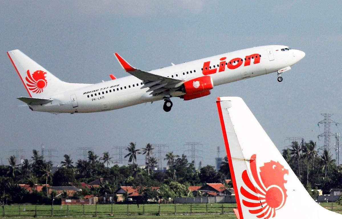 Một máy bay của hãng hàng không Lion Air. (Nguồn: nikkei)