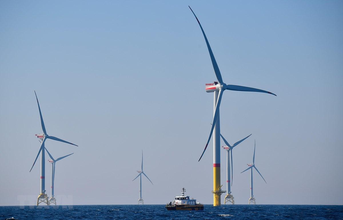 Một Tuabin gió tại Biển Baltic, miền bắc nước Đức. (Nguồn: AFP/TTXVN)