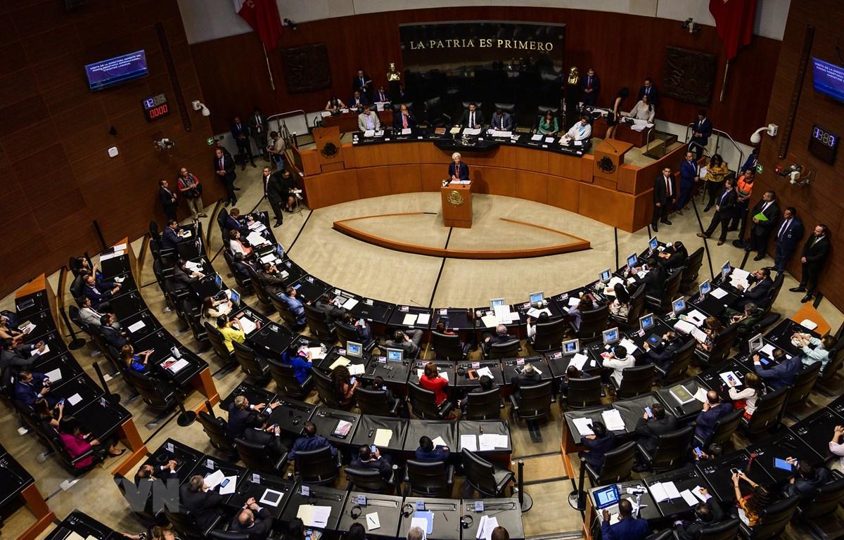Toàn cảnh một phiên họp của Thượng viện Mexico tại Mexico City ngày 29/5/2019. (Nguồn: AFP/TTXVN)