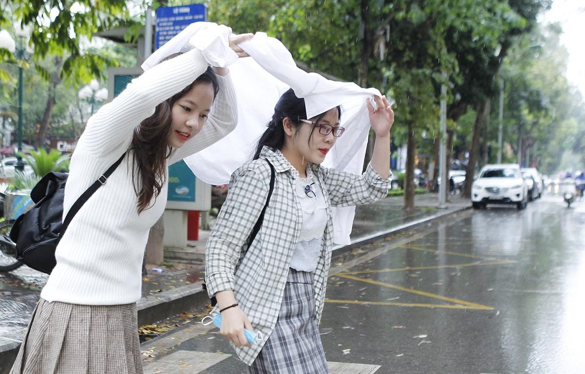 (Ảnh: Lâm Khánh/TTXVN)