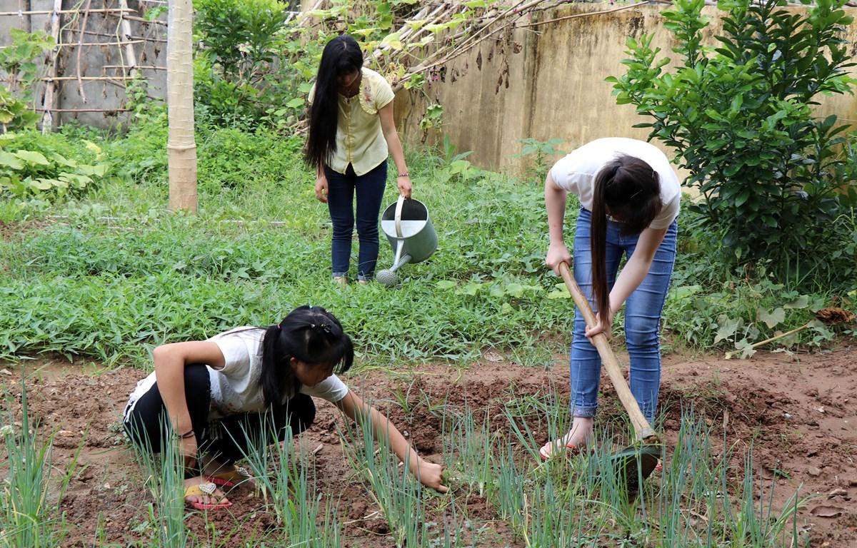 Các nạn nhân được giải cứu về Ngôi nhà Nhân ái do Tổ chức Vòng tay Thái Bình tài trợ. (Ảnh: Quốc Khánh/TTXVN)