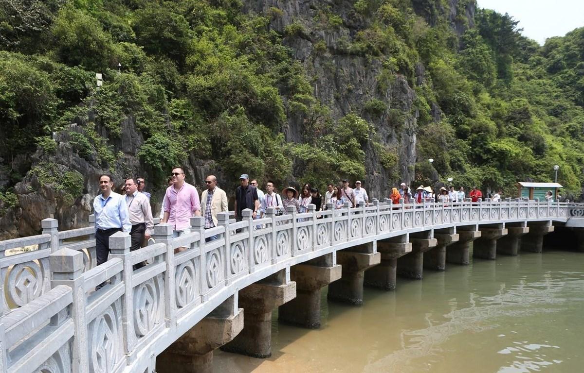 Các đại biểu đến tham quan động Thiên Cung. (Ảnh: Dương Giang/TTXVN)