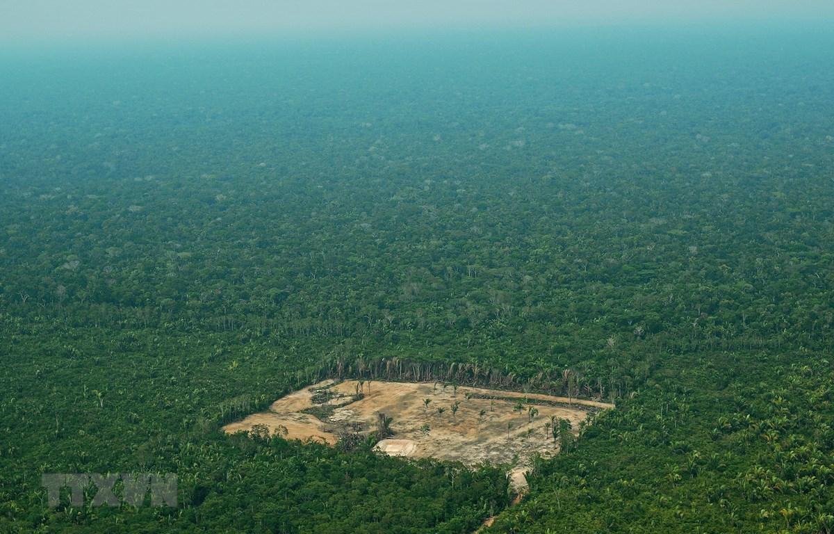 Khoảng rừng bị chặt phá ở khu vực Tây Amazon, Brazil, ngày 22/9/2017. (Ảnh: AFP/ TTXVN)