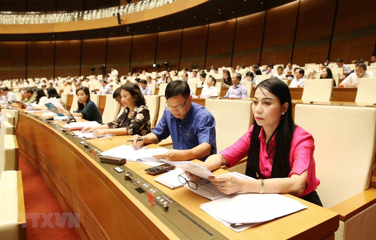 Đoàn Đại biểu Quốc hội tỉnh Vĩnh Phúc dự phiên họp. (Ảnh: Phương Hoa/TTXVN)