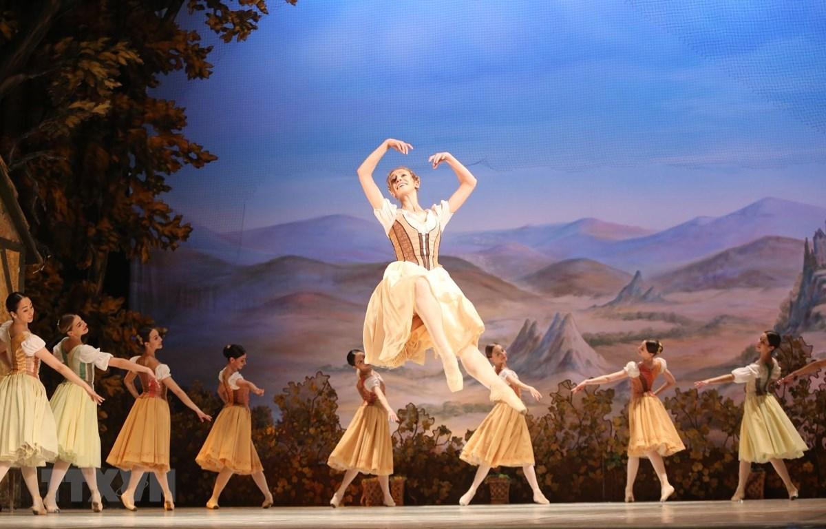 Giselle là vở vũ kịch điển hình của thể loại ballet lãng mạn. Các kỹ thuật ballet được phô diễn trong cảnh lễ hội mùa gặt và cảnh các Wilis bắt kẻ bội tình nhảy múa đến lúc chết. (Ảnh: Thành Đạt/TTXVN)