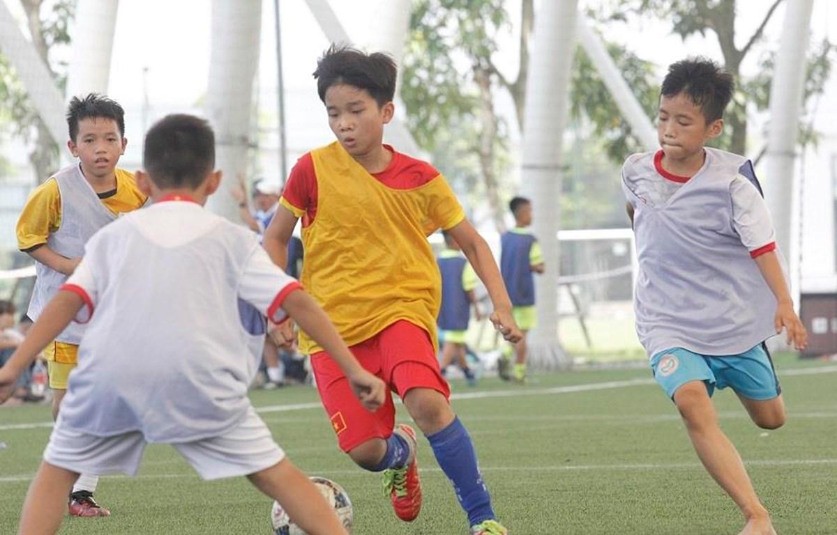 Mùa tuyển sinh 2019 của PVF sẽ có nhiều thay đổi nhằm hướng tới việc nâng cao chất lượng đầu vào. (Nguồn: Vietnam+)