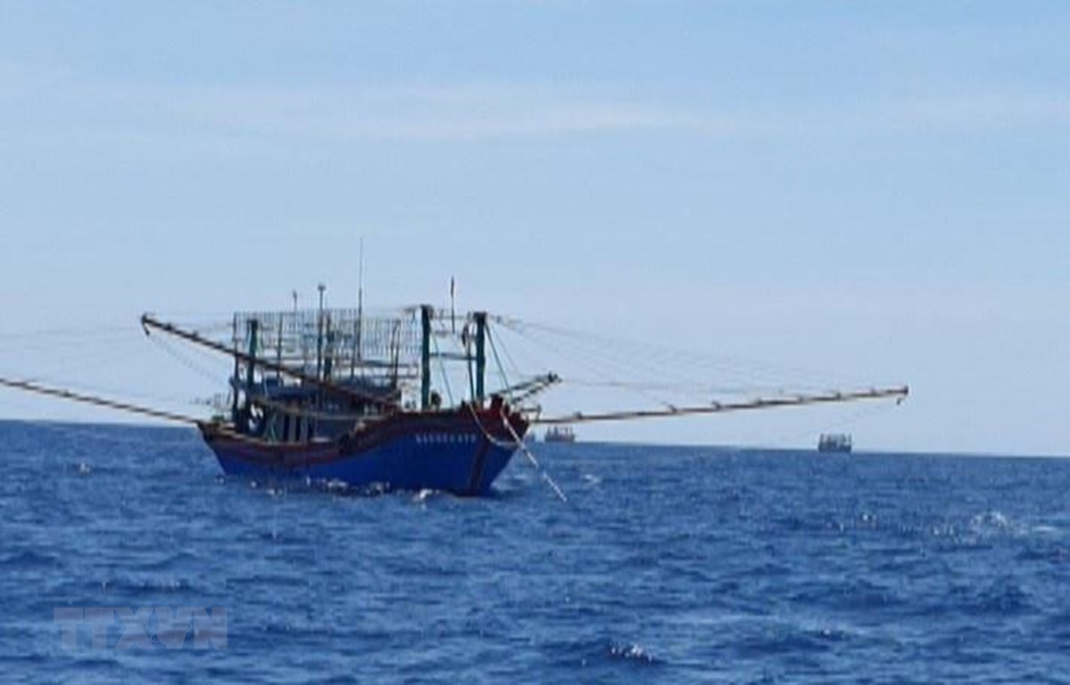 Các tàu cá hỗ trợ tìm kiếm. (Ảnh: Hoàng Ngọc/TTXVN)