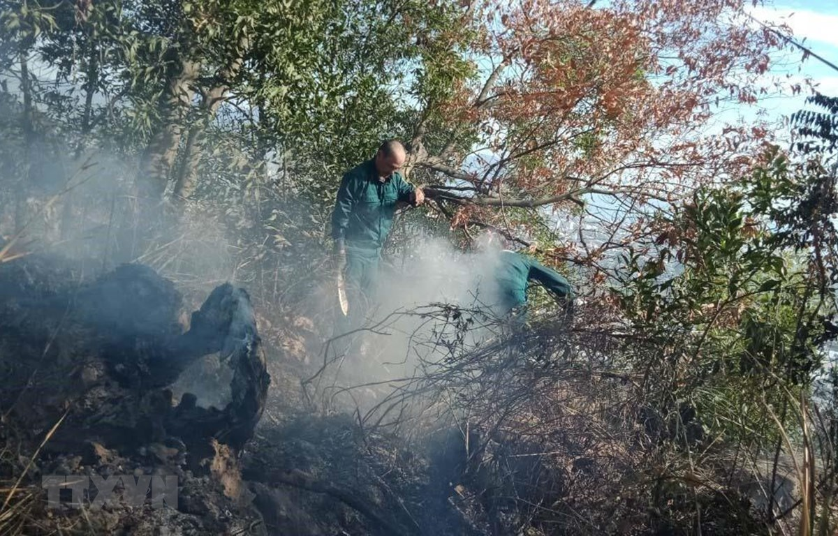 Lực lượng chức năng tiếp tục khoanh vùng, dập tắt hẳn các đám tro tàn sau đám cháy. (Ảnh: Quốc Dũng/TTXVN)