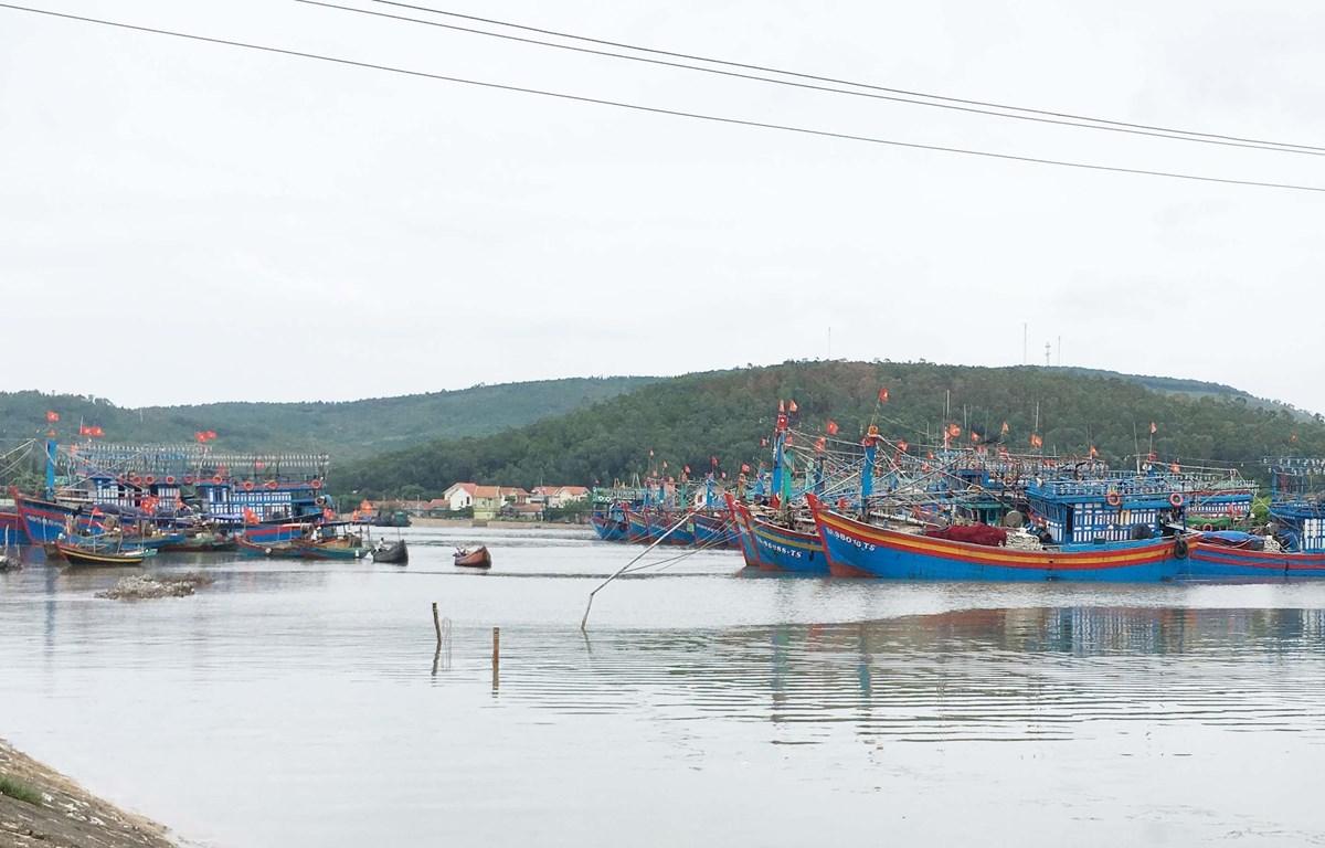 Nhiều tàu thuyền neo đậu an toàn tại cảng cá Lạch Quèn, xã Quỳnh Thuận, huyện Quỳnh Lưu, Nghệ An. (Ảnh: Nguyễn Oanh/TTXVN)