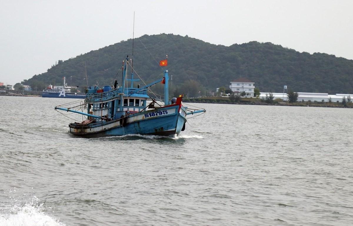 Tàu cá trên vùng biển Hà Tiên. (Ảnh: Lê Huy Hải/TTXVN)