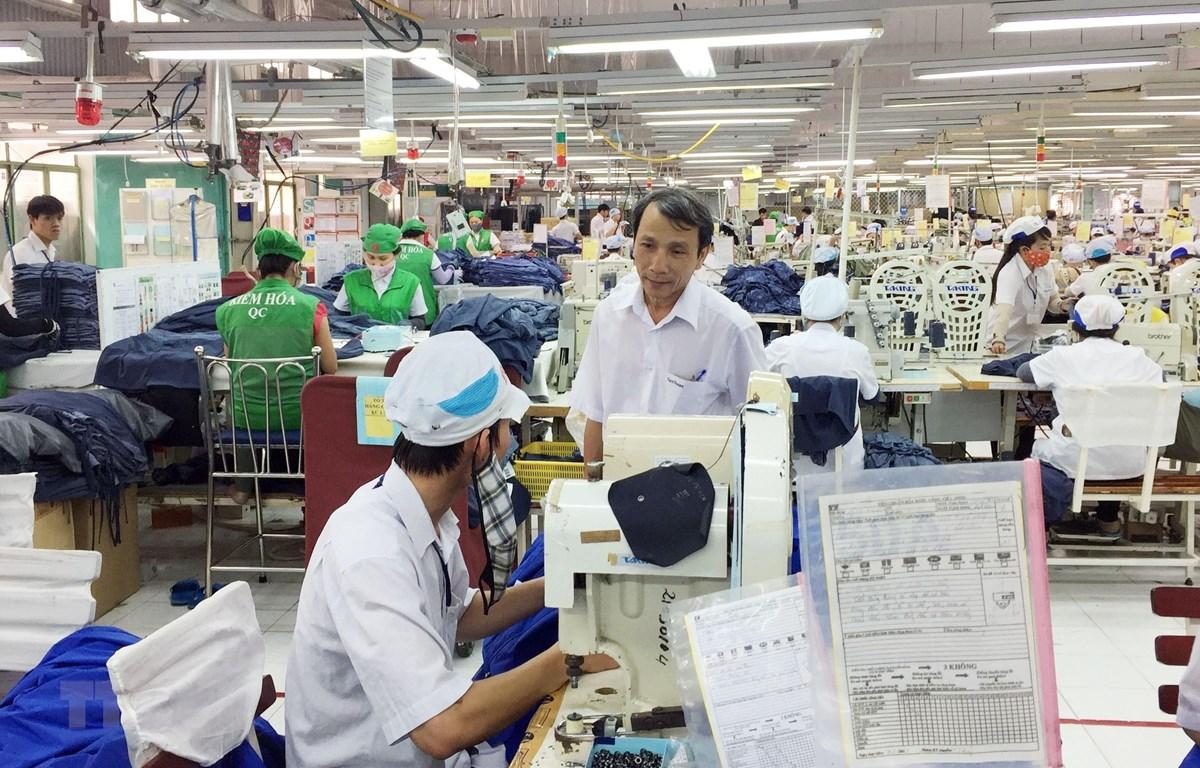 Nhiều lao động sau khi đào tạo đã được doanh nghiệp may Tiến Thuận Ninh Thuận bố trí việc làm ổn định. (Ảnh: Công Thử/TTXVN)