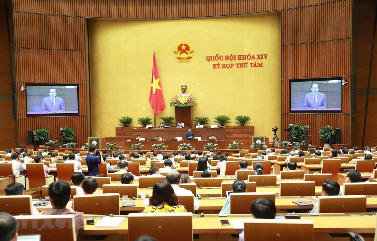 Bộ trưởng Bộ Lao động, Thương binh và Xã hội Đào Ngọc Dung giải trình làm rõ các vấn đề của dự án Bộ luật Lao động (sửa đổi). (Ảnh: Doãn Tấn/TTXVN)