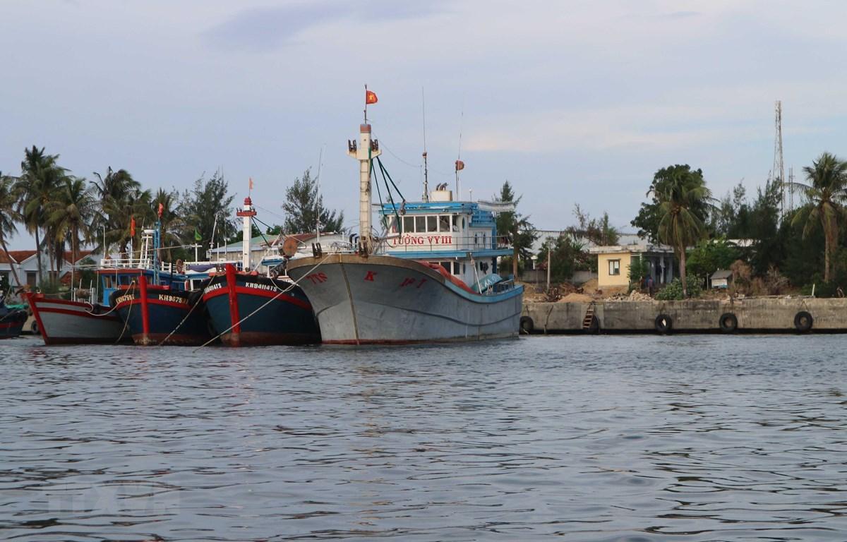 Tàu thuyền đánh bắt thủy sản của ngư dân neo đậu ở cảng để tránh trú. (Ảnh: Nguyễn Dũng/TTXVN)