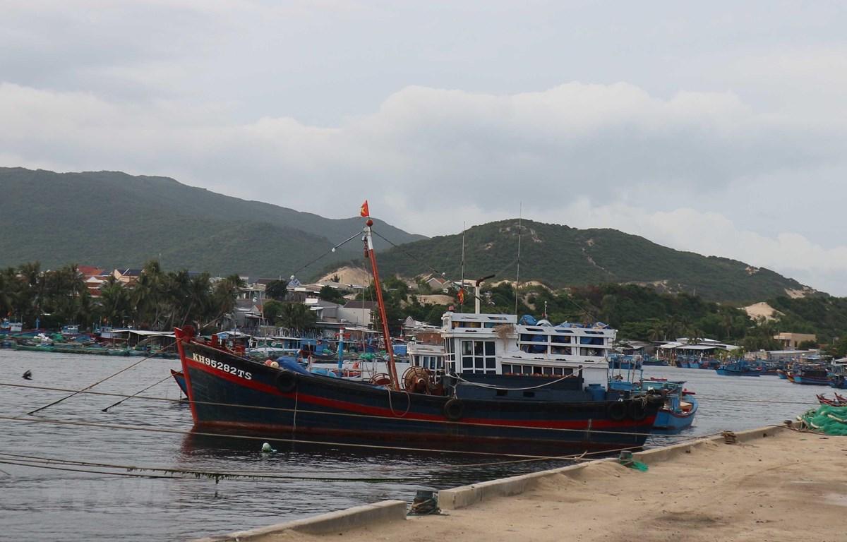 Tàu thuyền đánh bắt thủy sản của ngư dân Khánh Hòa neo đậu ở cảng để tránh trú. (Ảnh: Nguyễn Dũng/TTXVN)