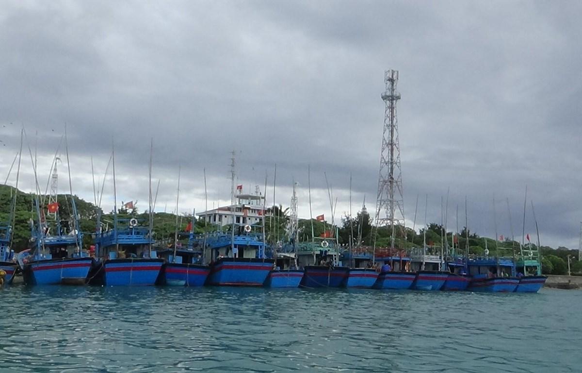 Tàu thuyền của ngư dân Khánh Hòa. (Ảnh: TTXVN phát)