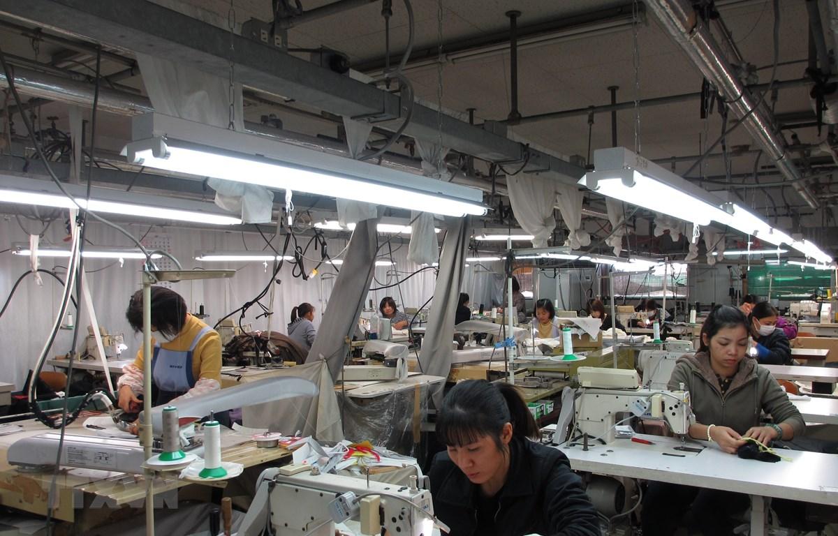 Các thực tập sinh Việt Nam tại Công ty TNHH May Yasuda (thành phố Sukagawa). (Ảnh: Đào Thanh Tùng/TTXVN)