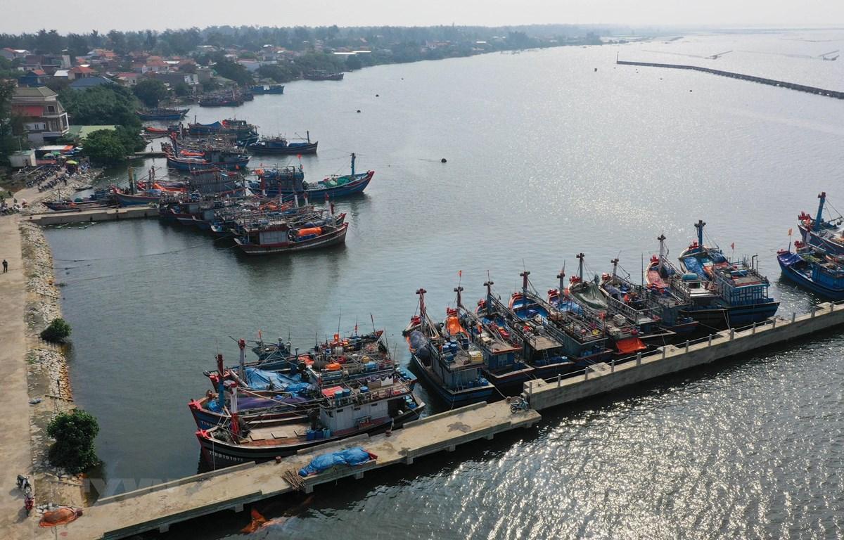 Tàu thuyền tại khu neo đậu tránh trú bão Phú Hải. (Ảnh: Hồ Cầu/TTXVN)