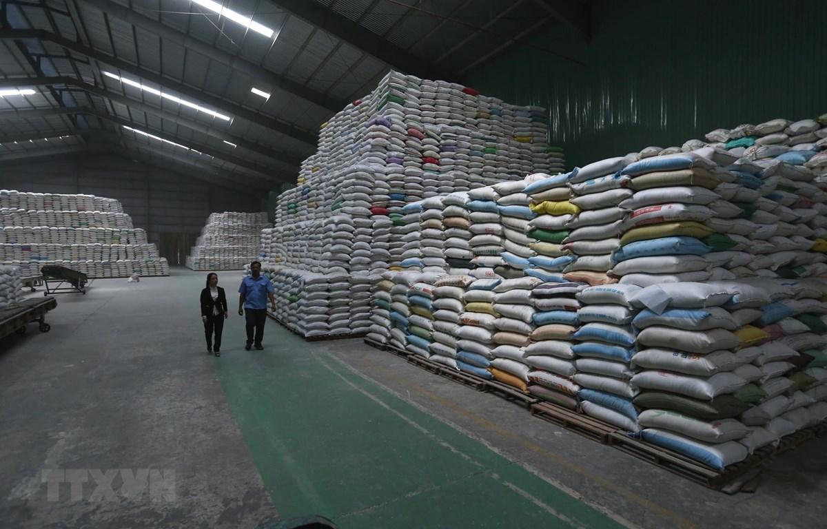 Sản phẩm gạo xuất khẩu được tạm trữ tại kho của công ty Lương thực Sông Hậu (Sông Hậu Food) thành phố Cần Thơ. (Ảnh: Vũ Sinh/TTXVN)
