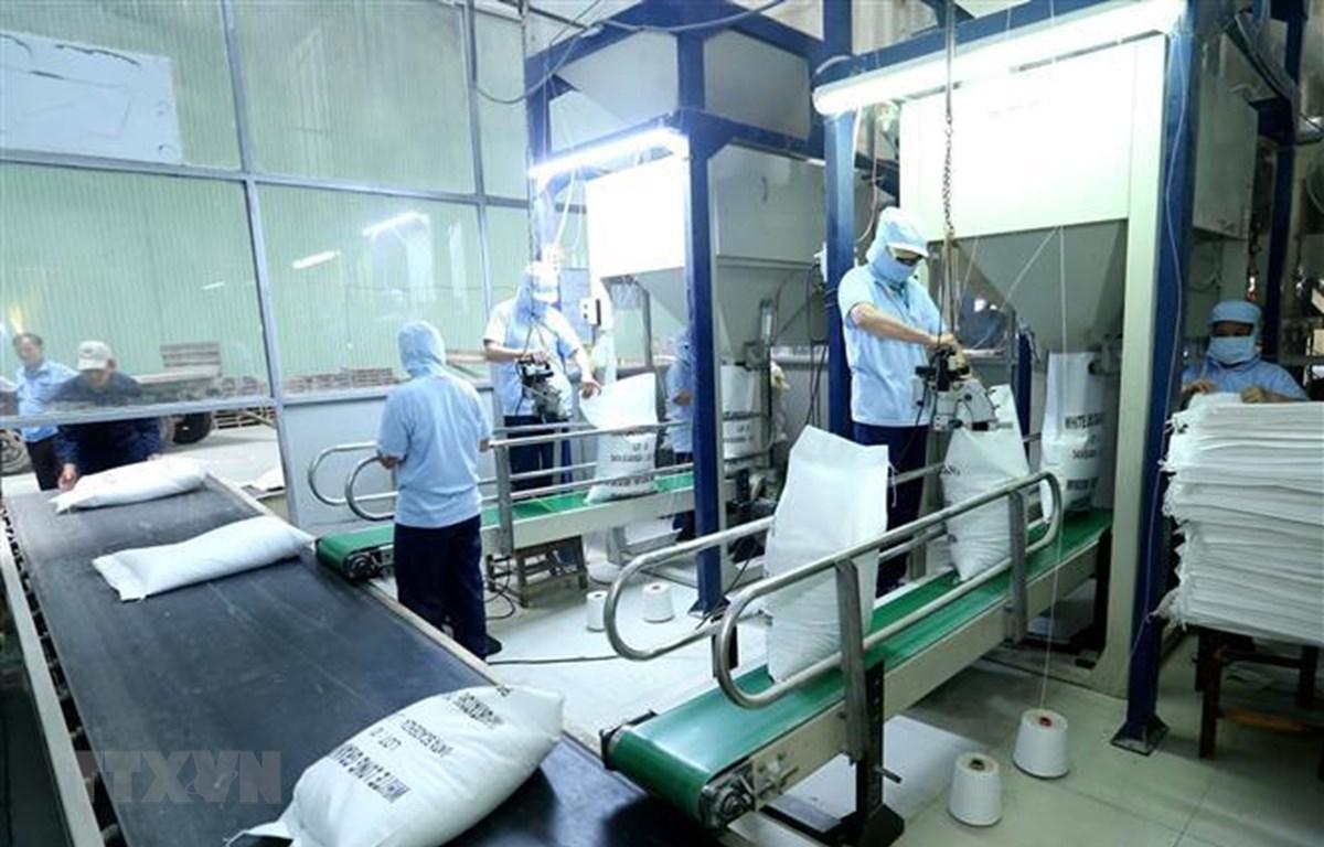 Đóng bao sản phẩm gạo xuất khẩu tại công ty Lương thực Sông Hậu (Sông Hậu Food), thành phố Cần Thơ. (Ảnh: Vũ Sinh/TTXVN)