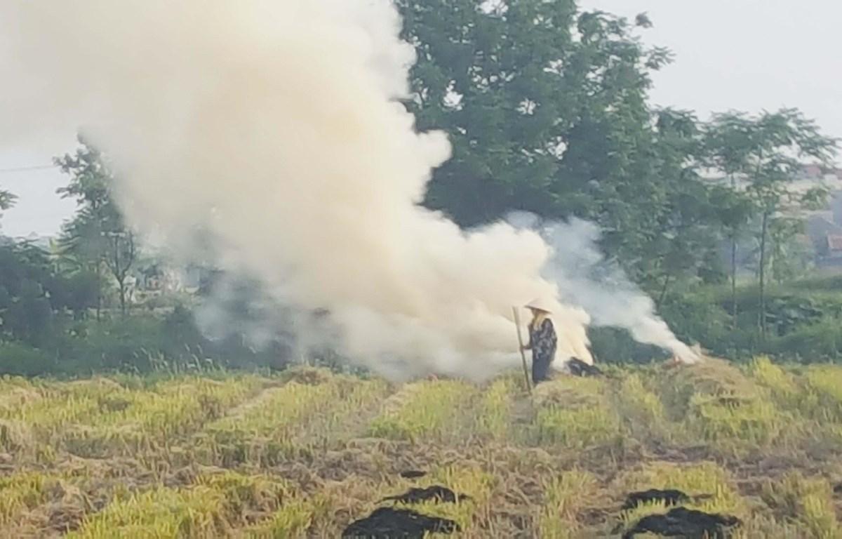 Người dân đốt rơm rạ sau khi thu hoạch gây khói bụi ở huyện Vĩnh Tường, tỉnh Vĩnh Phúc. (Ảnh: Nguyễn Trọng Lịch/TTXVN)