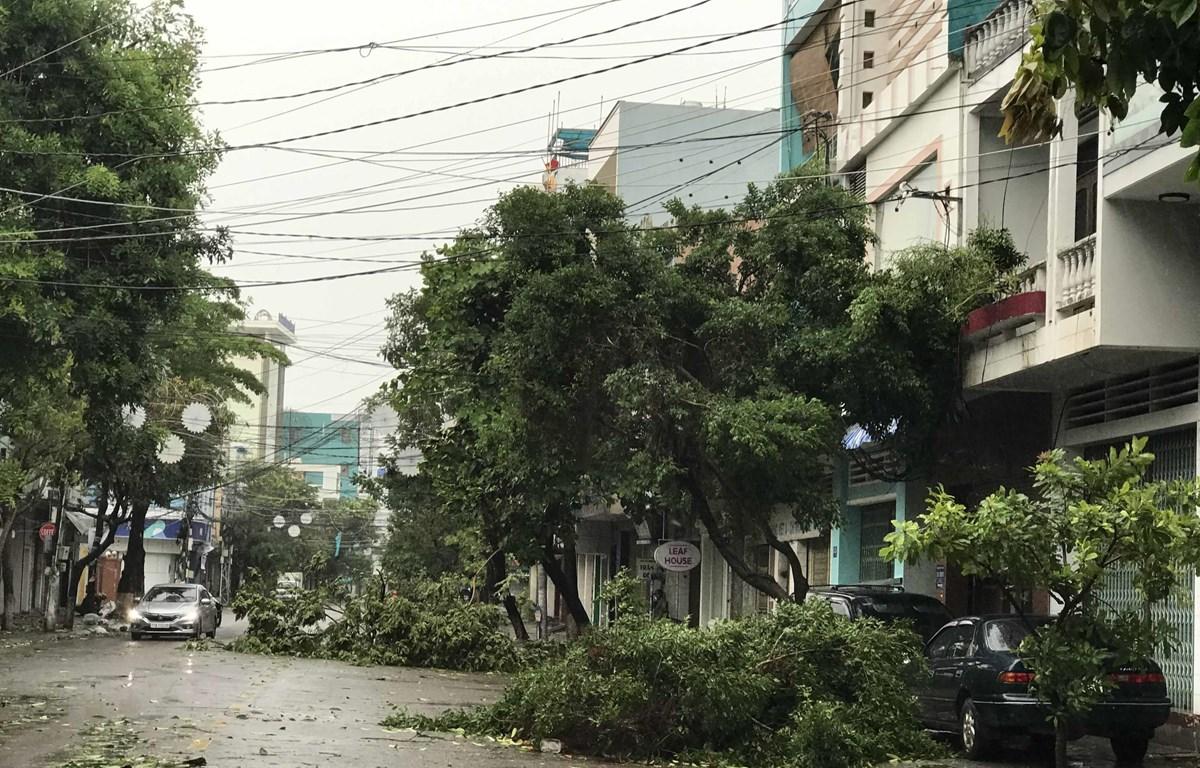 Tuyến đường ven biển Nguyễn Tất Thành (thành phố Đà Nẵng) đã có gió giật mạnh. (Ảnh: Văn Dũng/TTXVN)