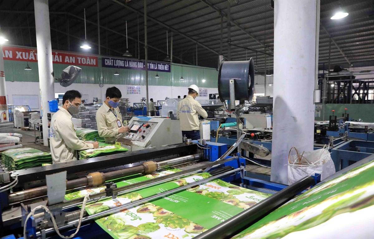 Dây chuyền sản xuất các sản phẩm bao bì tại Công ty Cổ phần bao bì Thuận Đức. (Ảnh: Phạm Kiên/TTXVN)