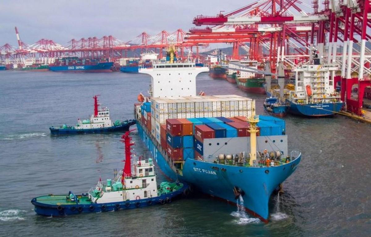 Cảng hàng hóa ở Thanh Đảo, tỉnh Sơn Đông, Trung Quốc. (Nguồn: AFP)