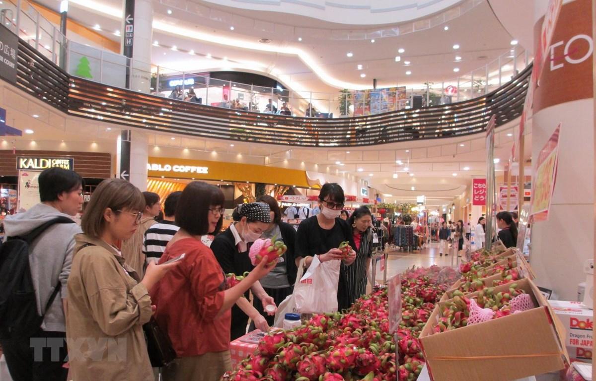 Người tiêu dùng Nhật Bản đang chọn mua quả thanh long của Việt Nam. (Ảnh: Đào Tùng/TTXVN)
